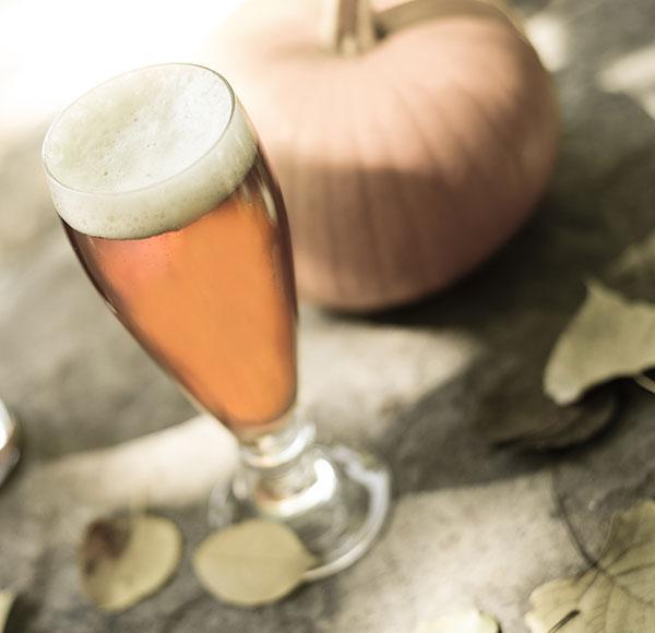 Pumpkin Homebrew Recipe