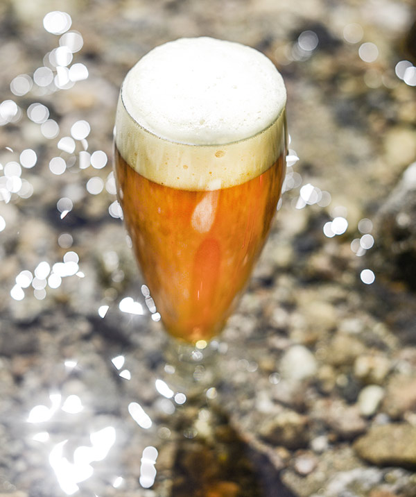 Bell's Two Hearted Homebrewing Clone