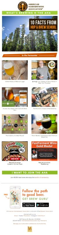 What's Brewing Newsletter