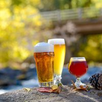 7 Homebrew Hot Spots to Visit Now