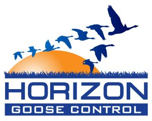 Goose Control in New Jersey