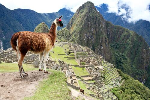 Private Machu Picchu Tour
