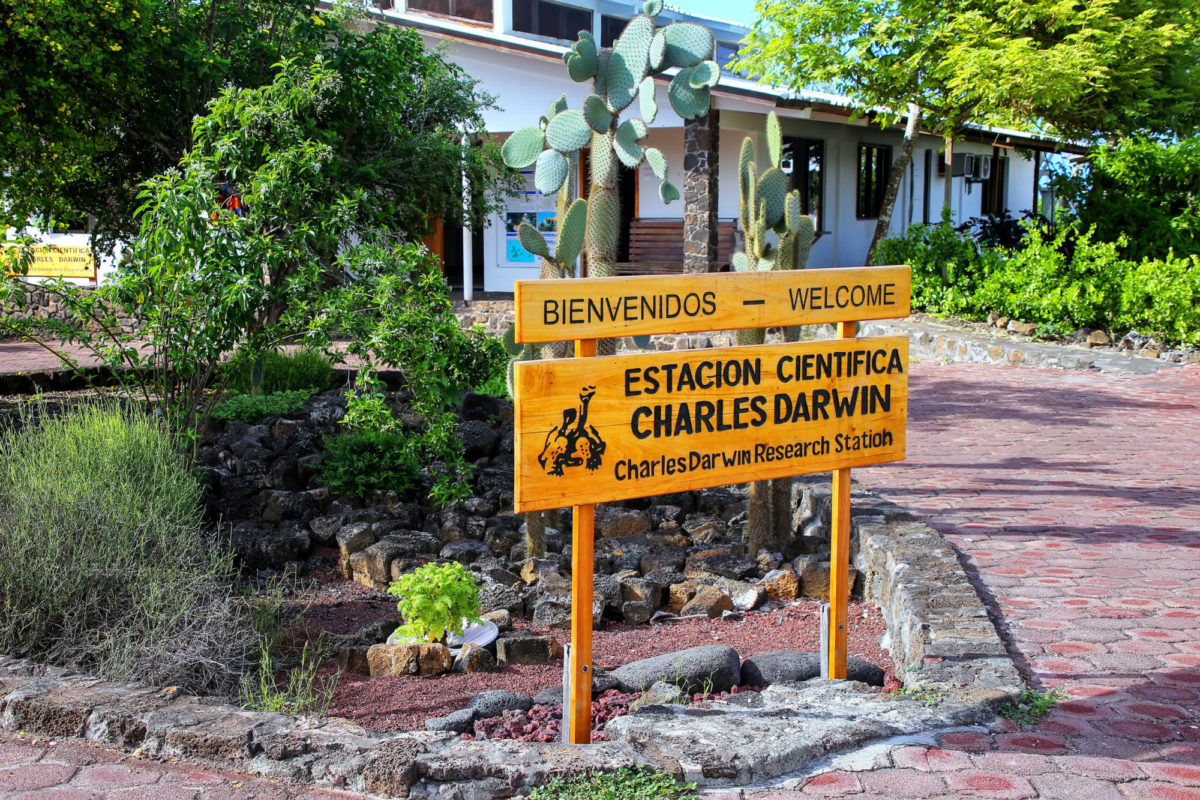 Get the inside story on Galapagos conservation