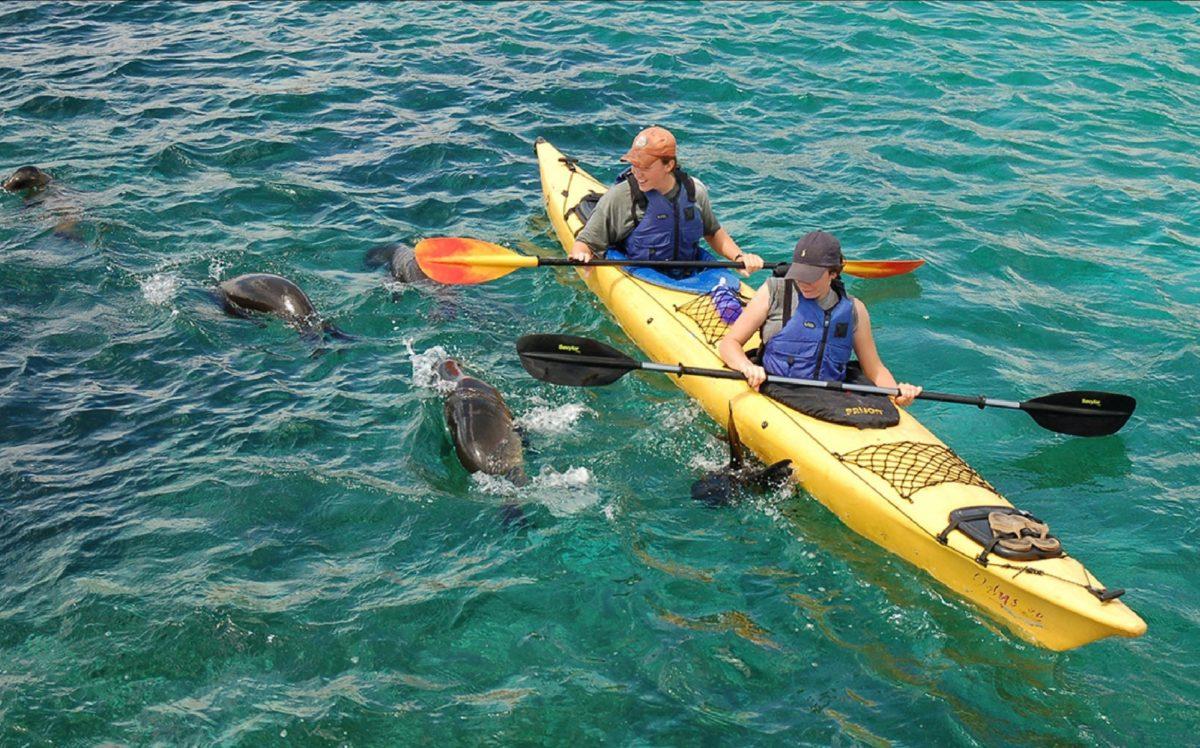 Sea kayaking on Española