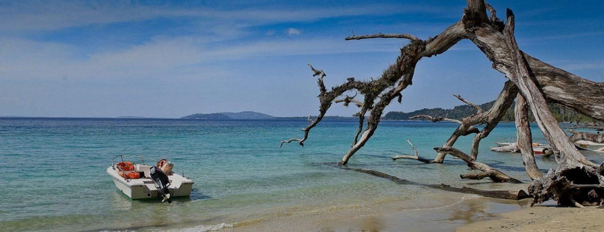 Beach, Islands and Tigers