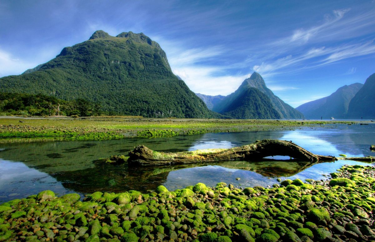 North and South Island