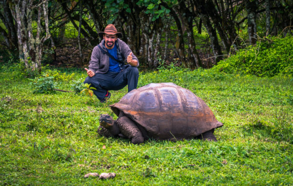 Walk with giant tortoises
