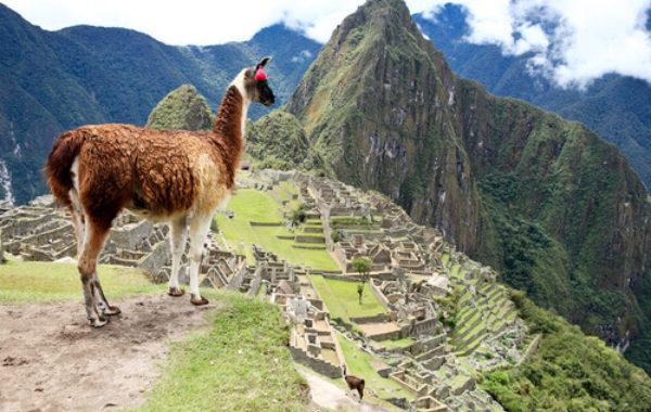 Machu Picchu to Cusco
