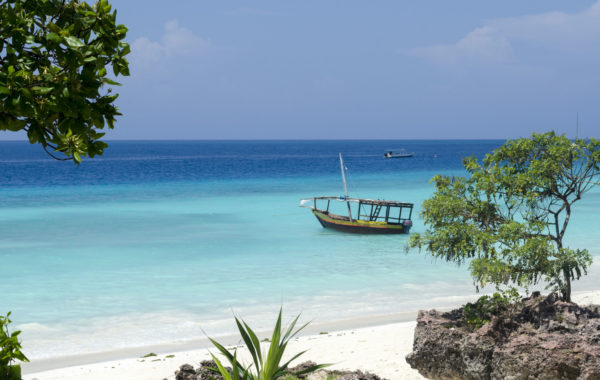 Relax on a paradise island