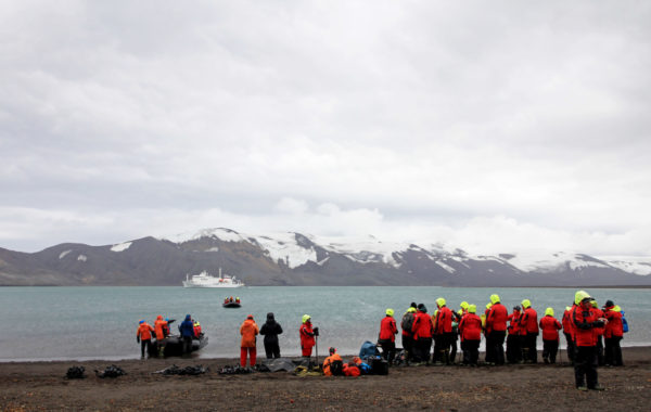 Swim in Deception Island