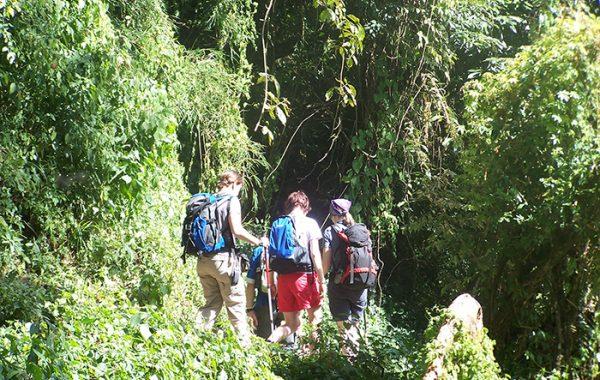 Fly to Pokhara - Trek to Tirkedhunga Village