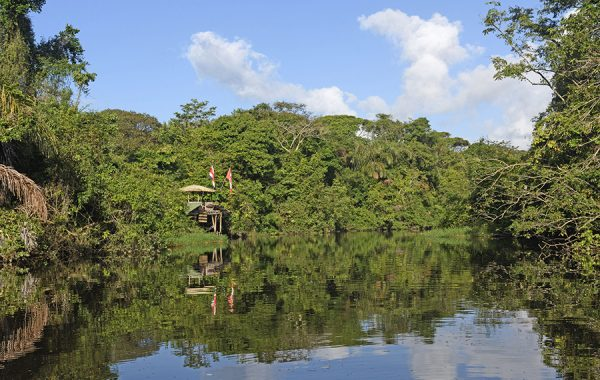 Float down the canals of Tortuguero