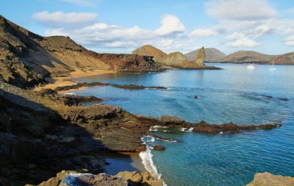 Penguins and Pinnacle Rock