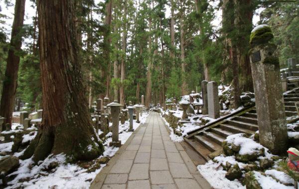 Explore a mountaintop Buddhist community