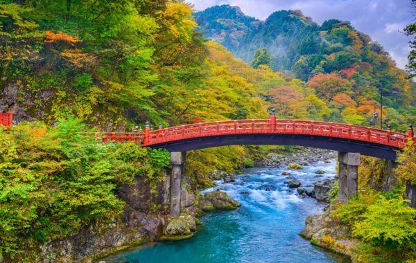 Waterfalls and wildlife near Tokyo