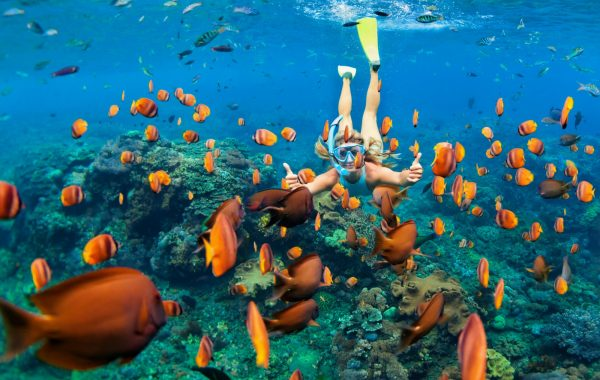 Go snorkelling at Banana Reef