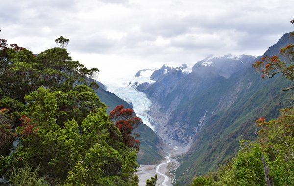 Tour the Franz Josef Glacier