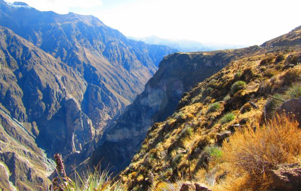 Plumb the depths of Colca Canyon