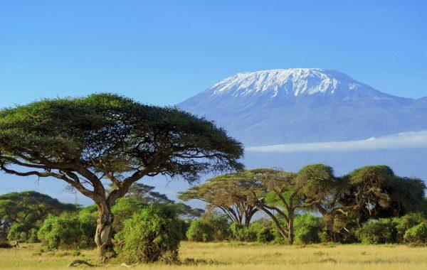 Hiking and wildlife at Mount Kilimanjaro
