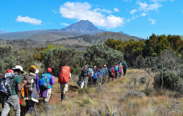 Hike-climb Africa's highest mountain
