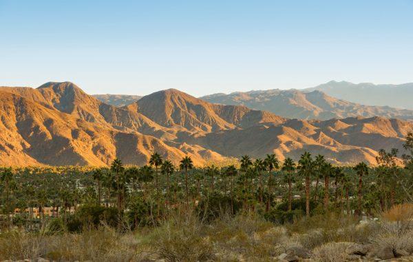 Unwind in Palm Springs