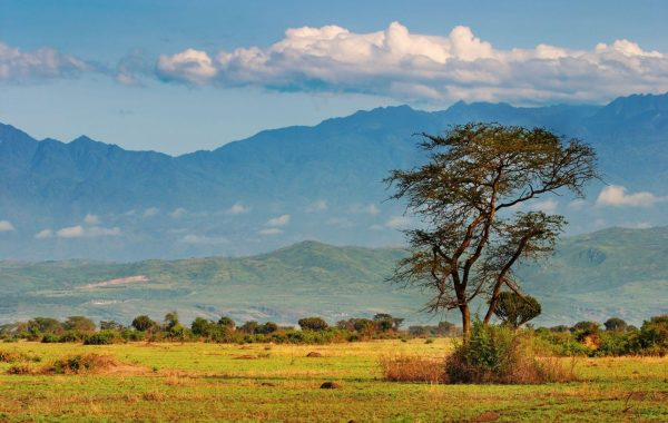 Hike the Rwenzori mountains