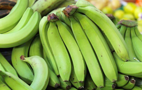 Go bananas in Kampala