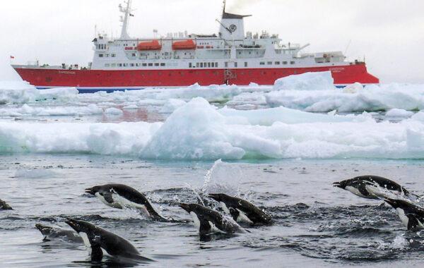 Polar Circle Crossing