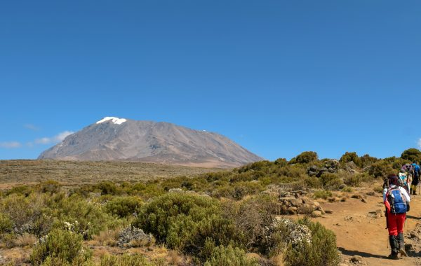 Explore all Mount Kilimanjaro has to offer
