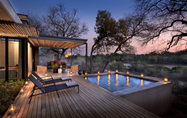 Experience a luxury safari in Sabi Sands