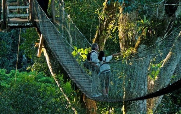 Visit a luxury Amazon eco-lodge