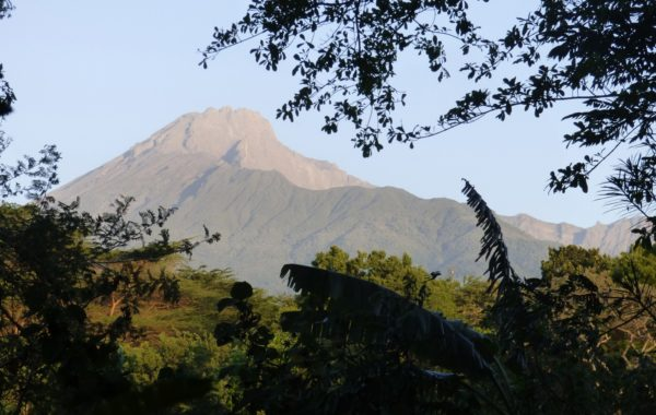 Arrival to Arusha