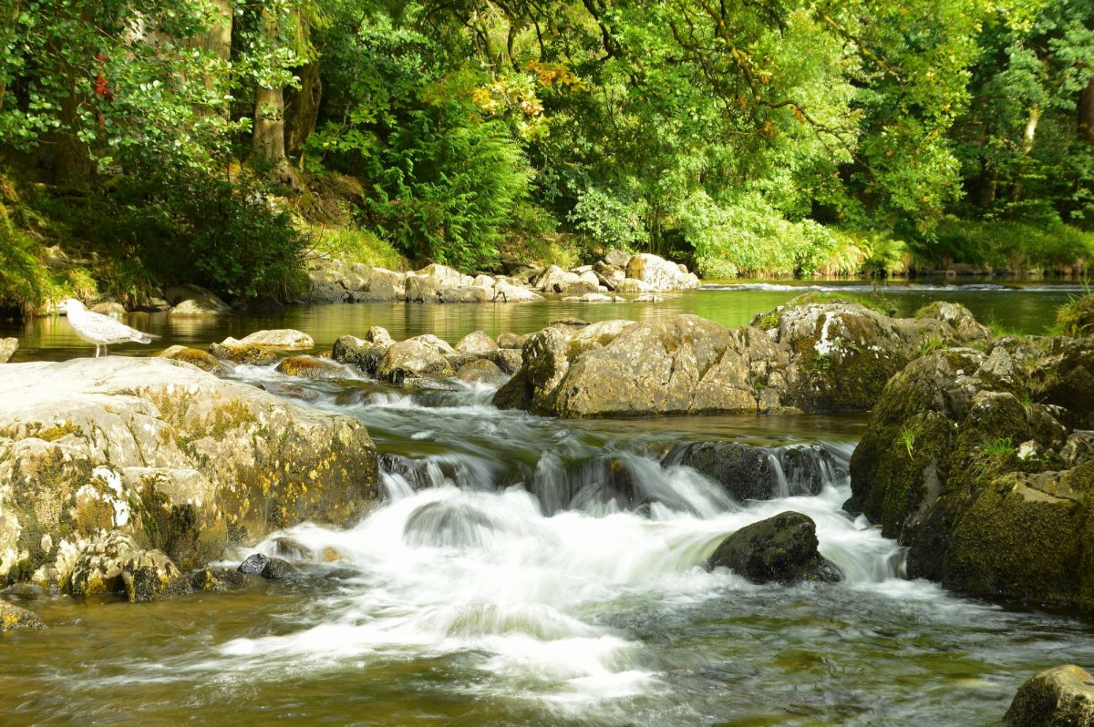 Afon Llugwy at Betwys y Coed Wales UK