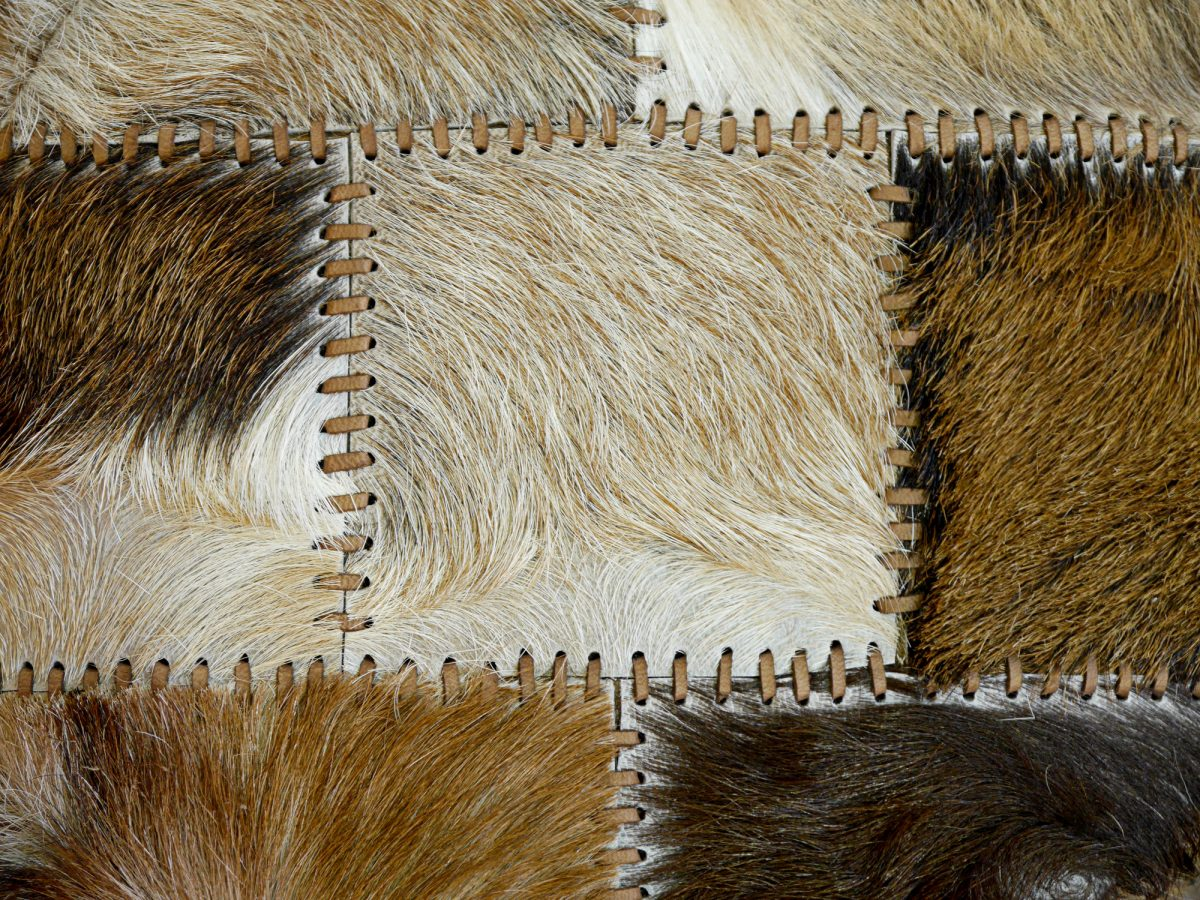 Animal skins 2