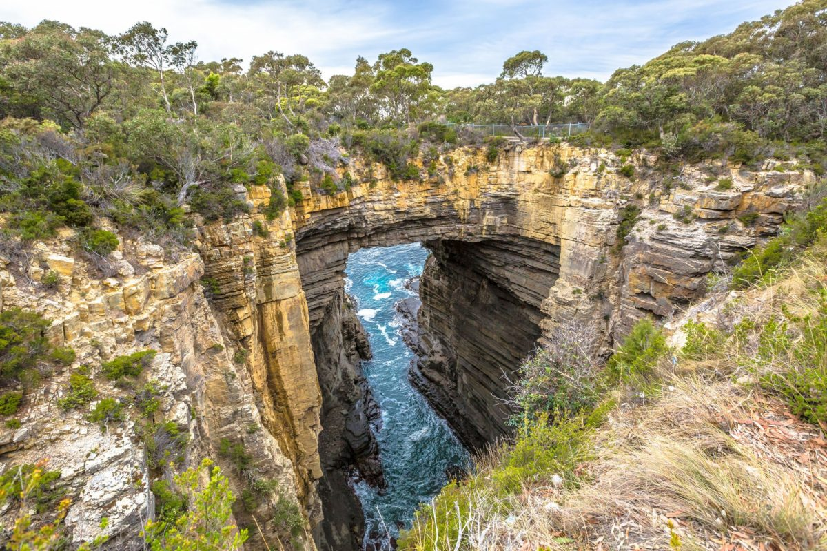 Aus Tasmania Tasman Arch is an unusual geological formation found in the Tasman National Park