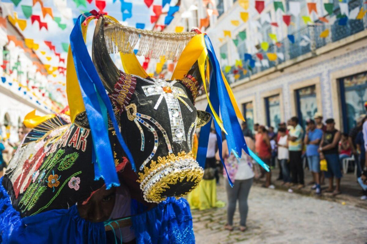 Brazil Sao Luis bulls festival