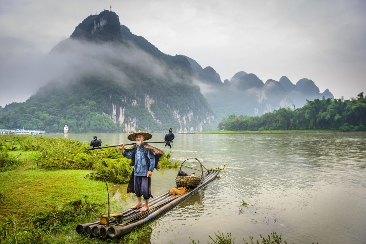 China Yangshuo ormorant fisherman and his birds on the Li River