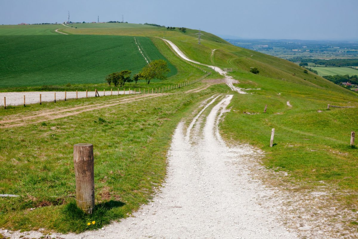 England South Downs Way 5