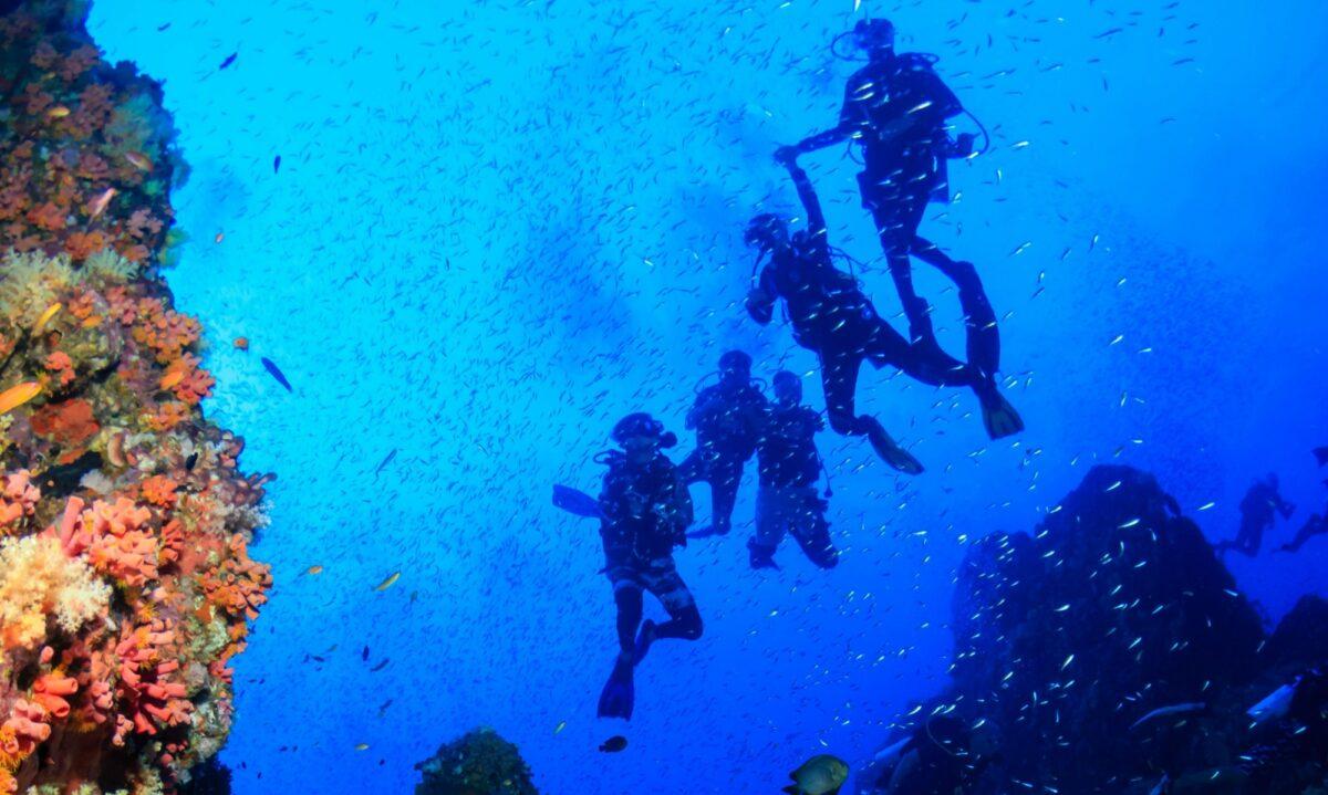 Jordan Red Sea2
