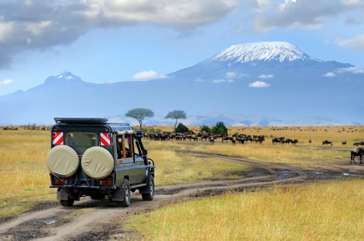 Kenya_Msaramara Kilimanjaro Wildebeest