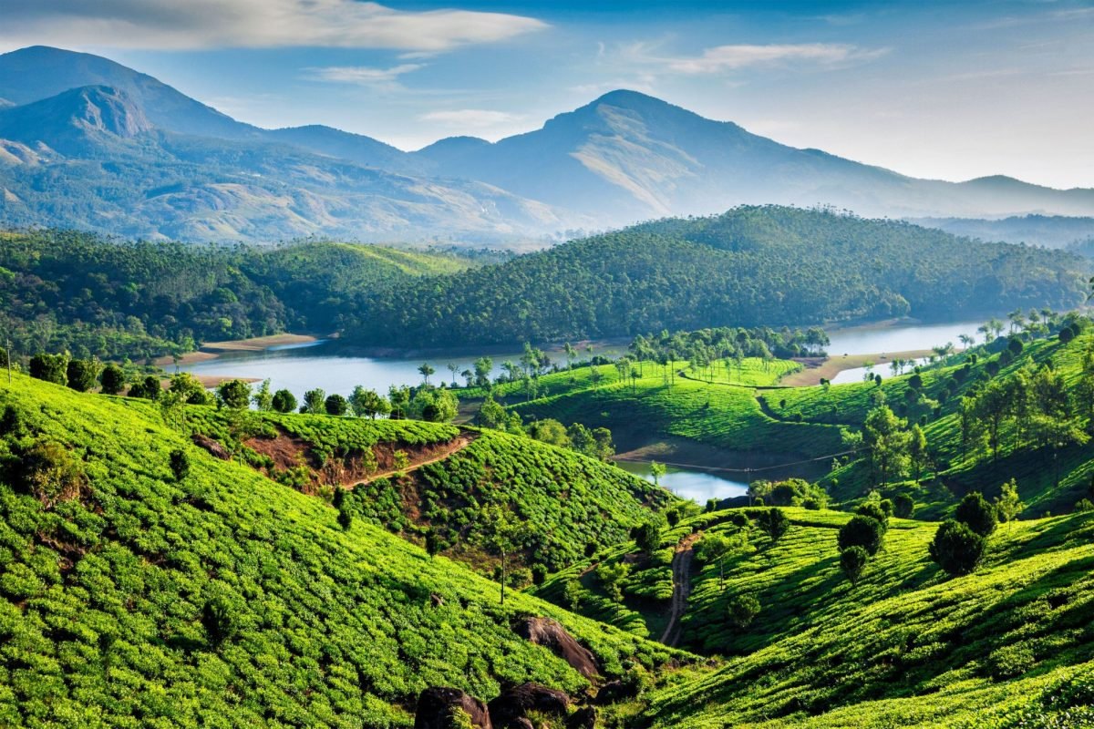 Kerala Tea plantations and Muthirappuzhayar River in hills near Munna