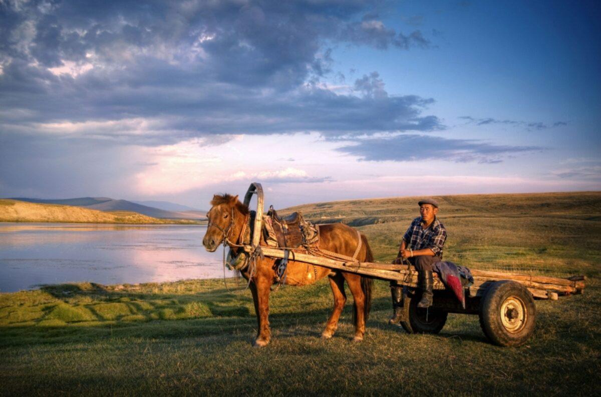 Mongolia horsecart
