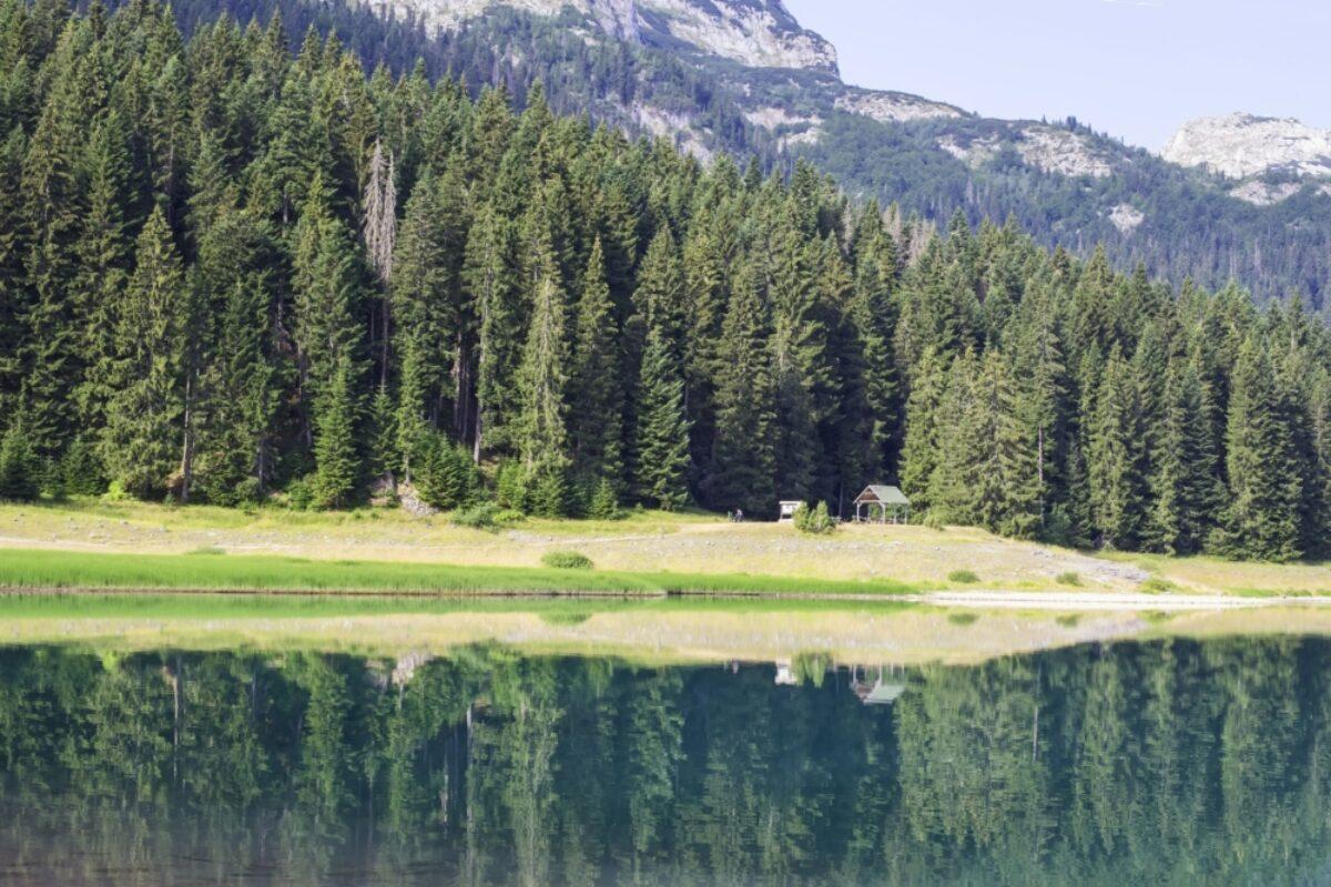 Montenegro Durmitor National Park3