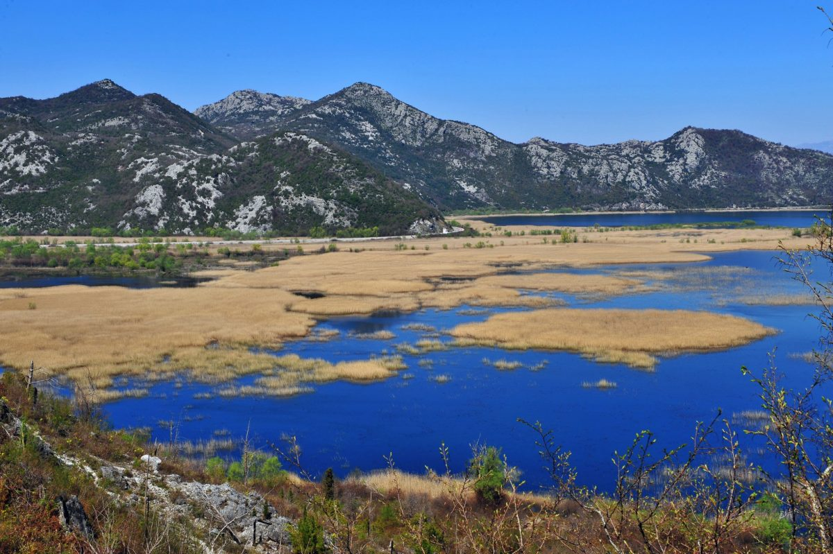 Montenegro Virpazar view of Skader Lake