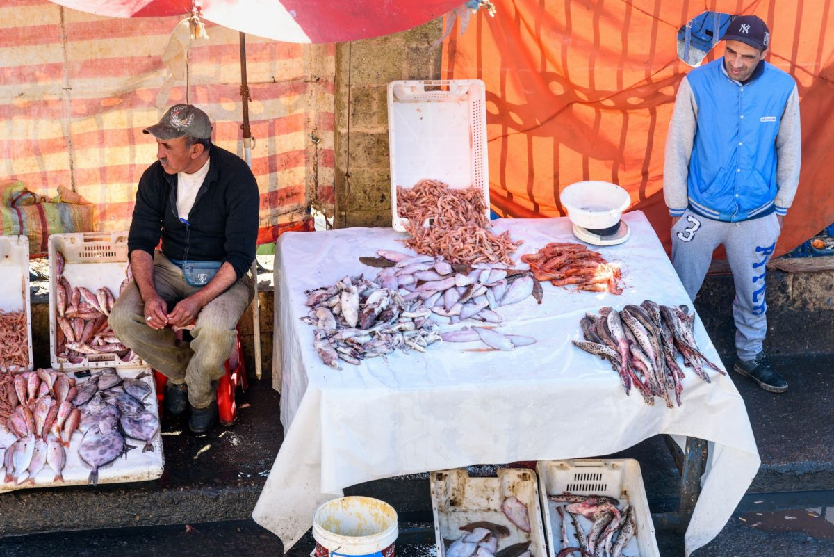 Morocco Essaouria Moroccan local men sell fresh fish and seafood on the market in port