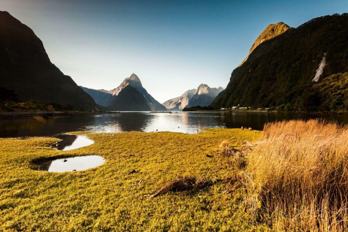 NZ Milford Sound autumn