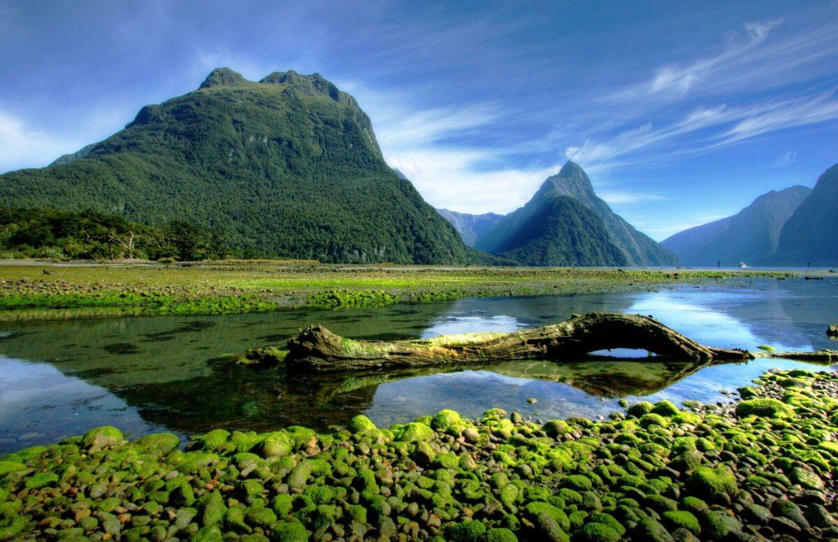 NZ Milford Sound mitrepeak