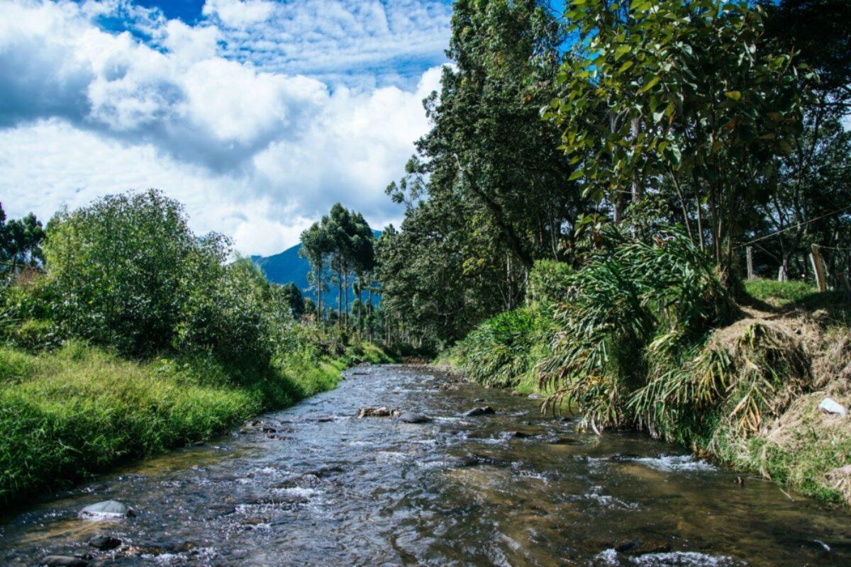 Oxapampa Central Selva Peru