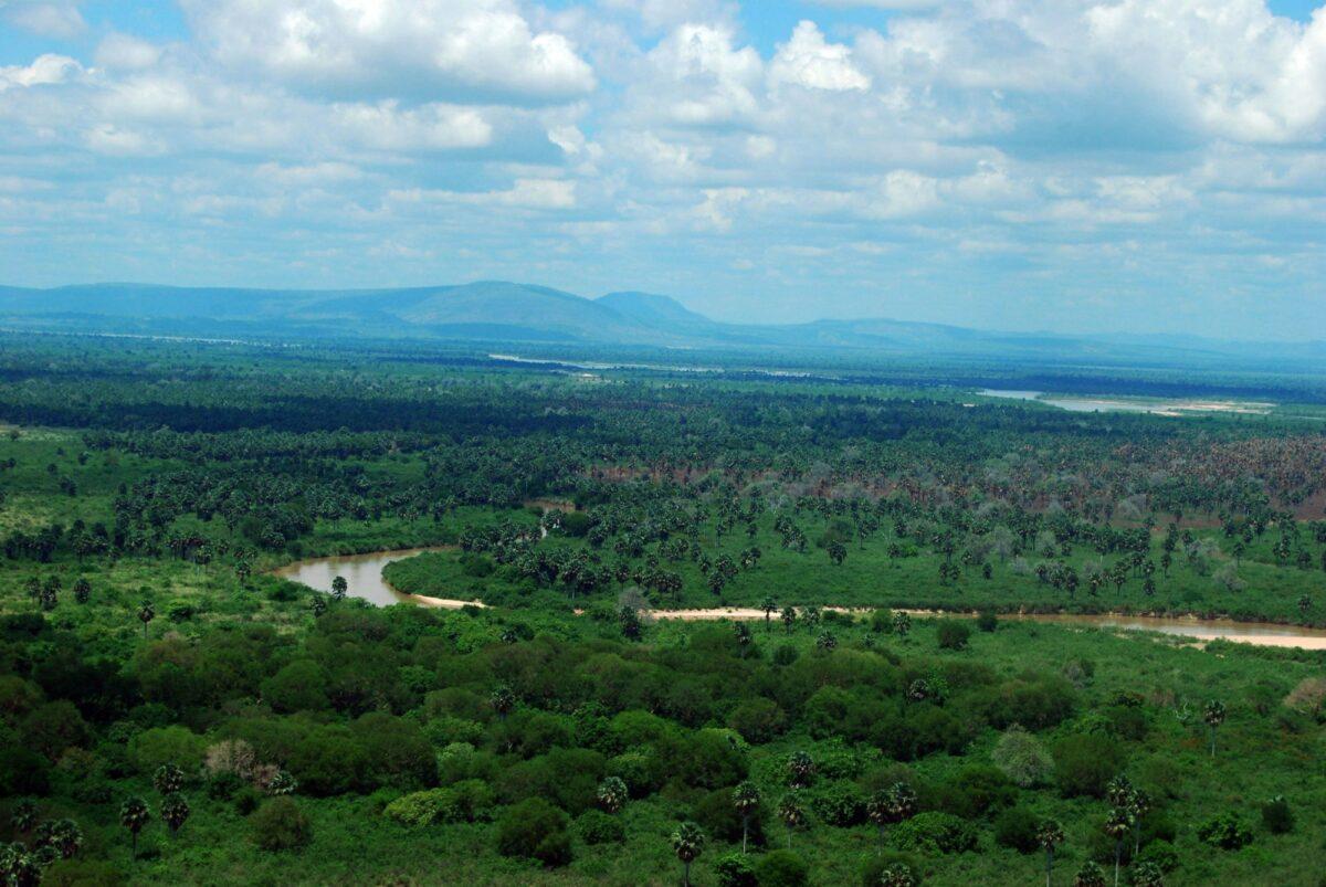 Rufiji River in the Selous Game Reserve Tanzania