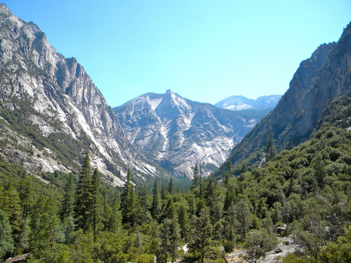 Sequoia kings canyon national park usa
